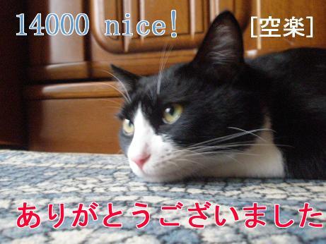 14000nice.jpg